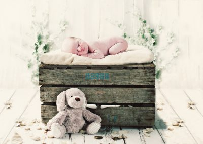Baby-Portrait-Photogaphers -0003