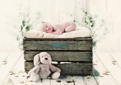 Baby-Portrait-Photogaphers -0003